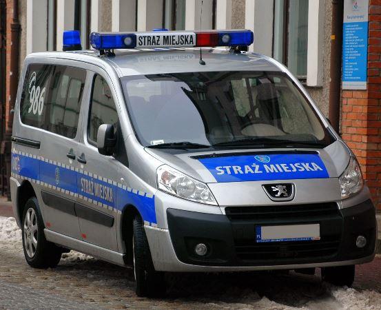 SM Olsztyn: Pies z ulicy Boenigka trafił do schroniska
